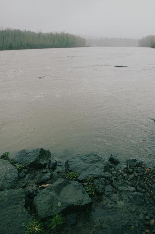 雨のオレゴン4