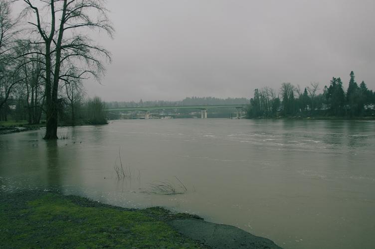 雨のオレゴン5