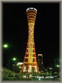 2011.01.03  神戸 007