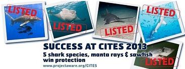 CITES2013achievement.jpg