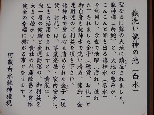 DSC01222.jpg