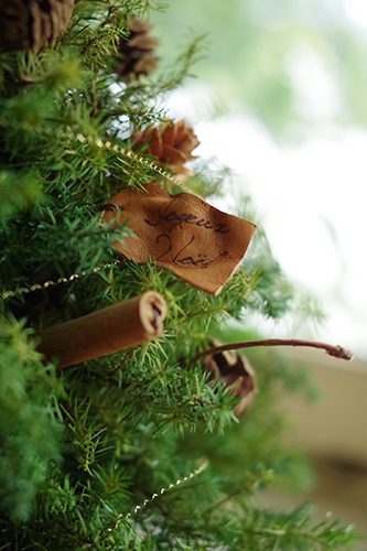 ヒムロスギのプリザーブのナチュラルなクリスマスツリー