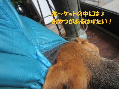 079_20130112102034.jpg