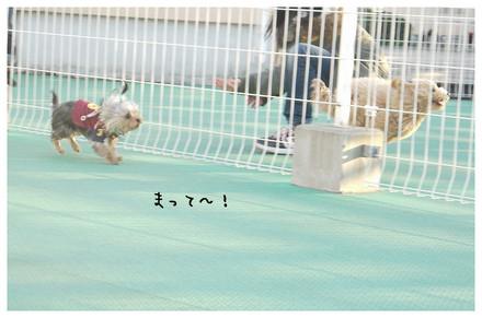 10_20130218011211.jpg