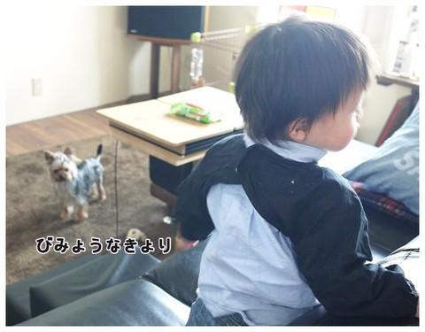 1_20130502201327.jpg