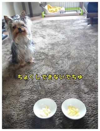 2_20130331012839.jpg