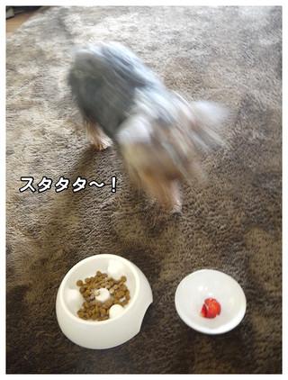 3_20130331000422.jpg