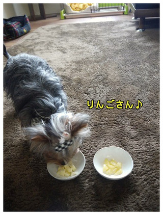 4_20130331012841.jpg