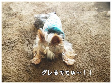 5_20130531224946.jpg