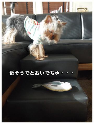 7_20130411235140.jpg