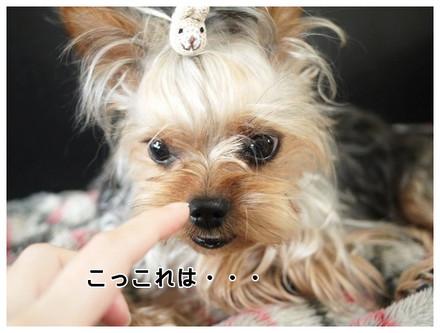 9_20130507231422.jpg