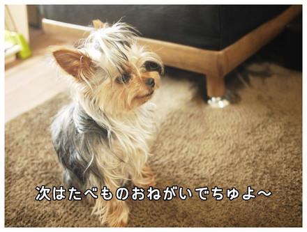9_20130517010411.jpg