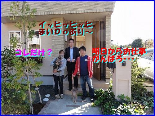DSC09298.jpg