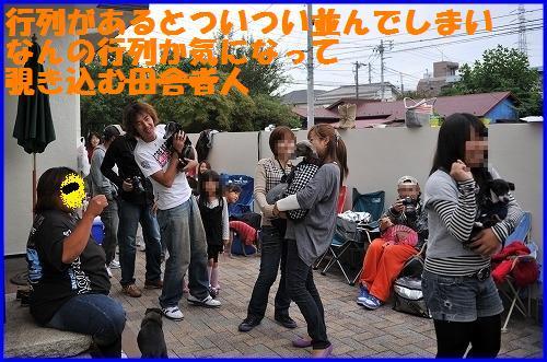 DSC_0001_20101031005518.jpg