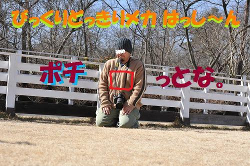 DSC_00145.jpg