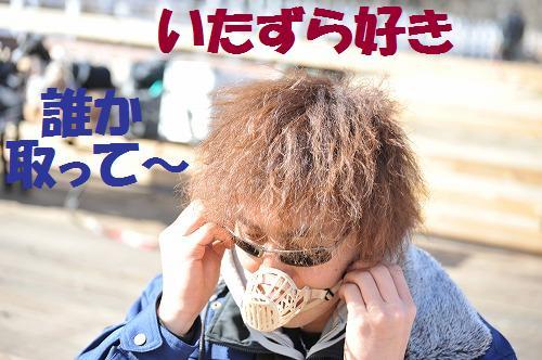 DSC_0075_20100210231653.jpg