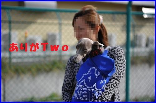DSC_0354_20101115233139.jpg