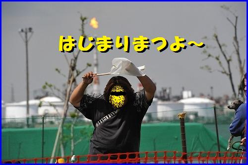 DSC_0412_20100511234255.jpg