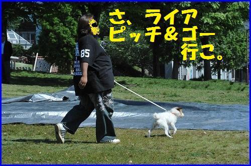 DSC_0736_20100518230720.jpg