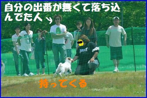 DSC_0846_20100519010323.jpg