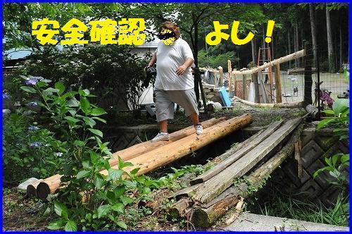 DSC_0943_20100713212914.jpg