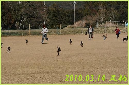 DSC_0977_20100619212328.jpg