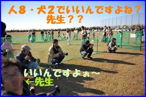 DSC_1008_20101123213419.jpg