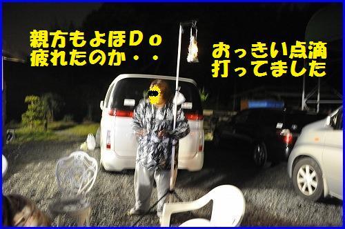 DSC_1049_20100518231314.jpg