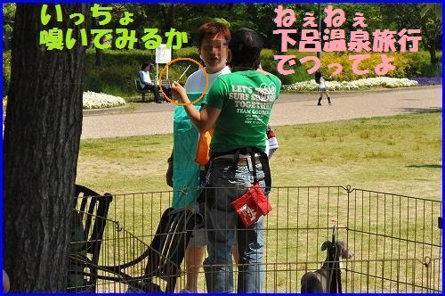 DSC_1148_20100520035912.jpg