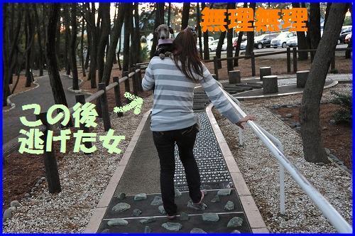 DSC_1343_20101127005642.jpg