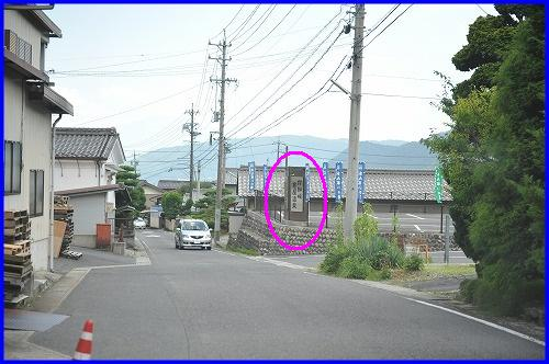 DSC_1680_20100729215922.jpg