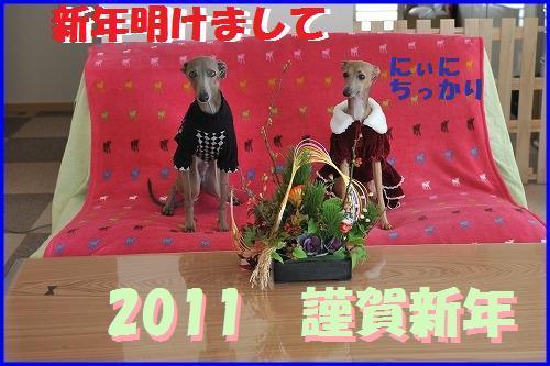DSC_1820_20110101214248.jpg