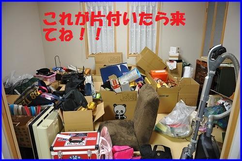 DSC_2012_20110118230239.jpg