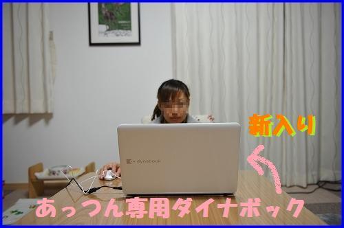 DSC_2014_20110118230238.jpg