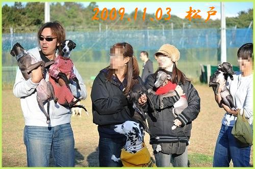 DSC_2484_20100619222753.jpg
