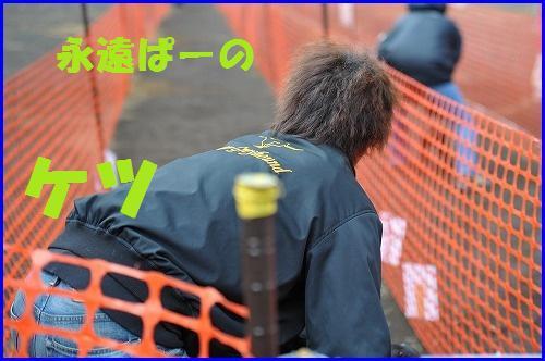 DSC_2635.jpg