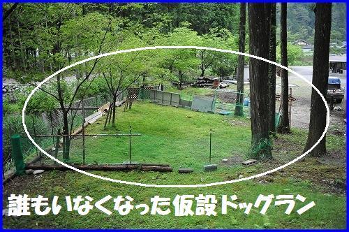 DSC_3176_20100624022204.jpg