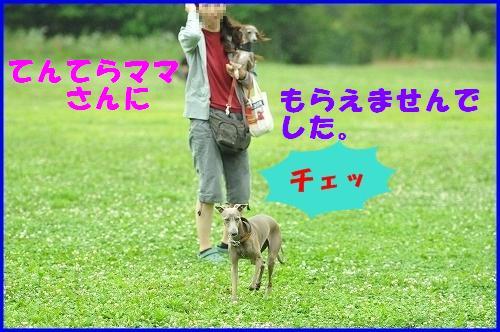 DSC_3186.jpg
