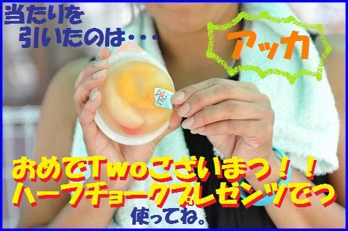 DSC_3513.jpg