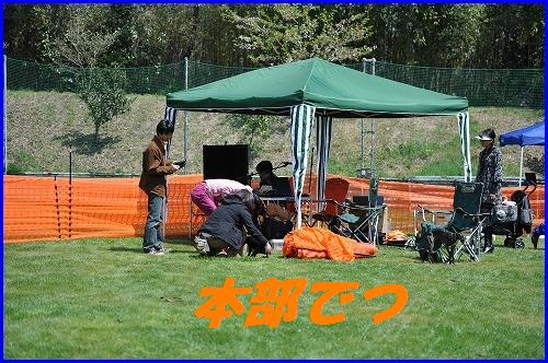 DSC_8723.jpg