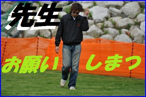 DSC_8739_20100428001001.jpg