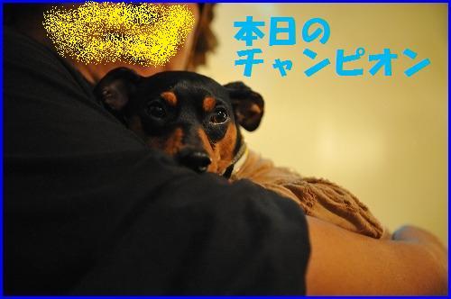 DSC_9153.jpg