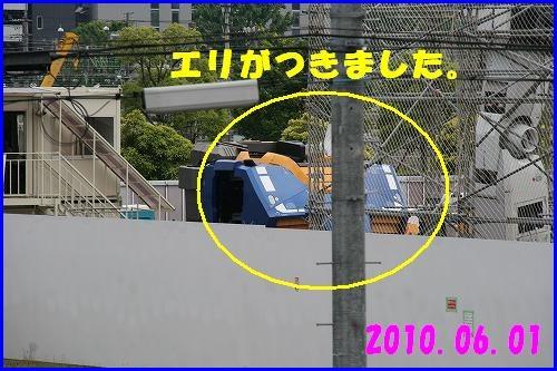 IMG_8388.jpg