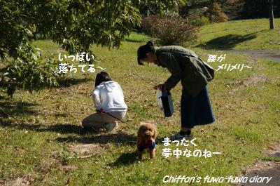 DSC04461_convert_20141024181707.jpg