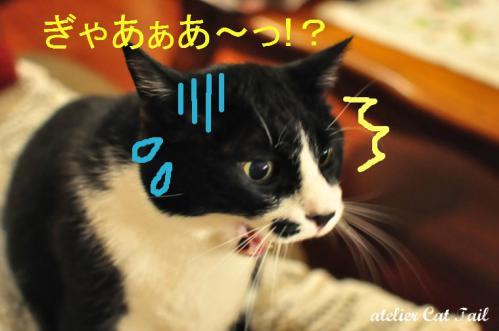 ひろみちゃん♪54