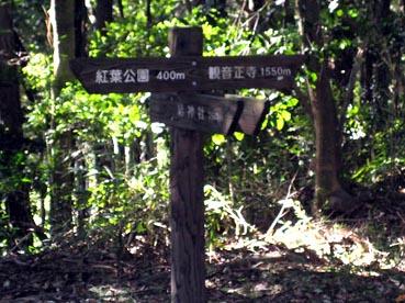 1.5kmですか・・・:観音正寺
