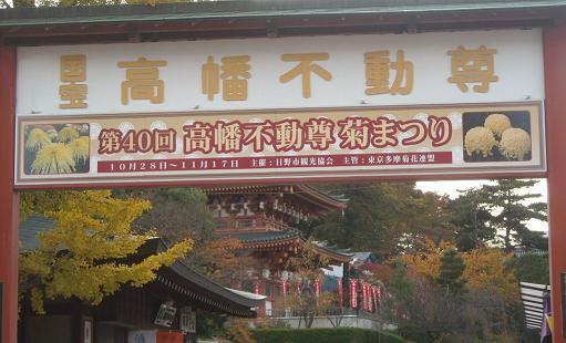 11月16日菊祭り