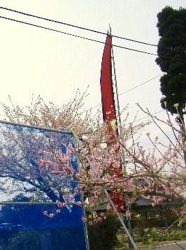 春祭り・2