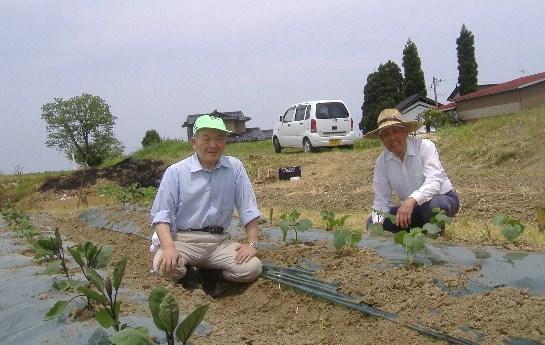 石崎さん農業体験