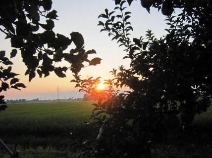 処暑の日の出